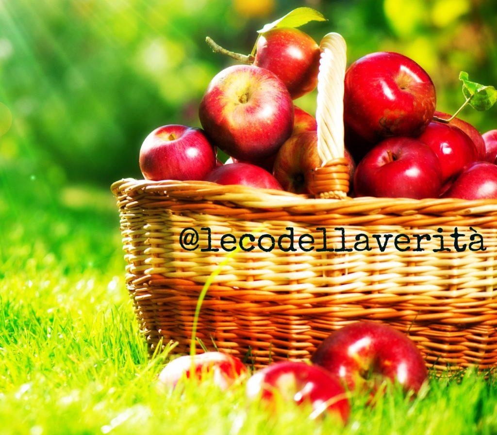 Una mela al giorno non salva più, parola della scienza
