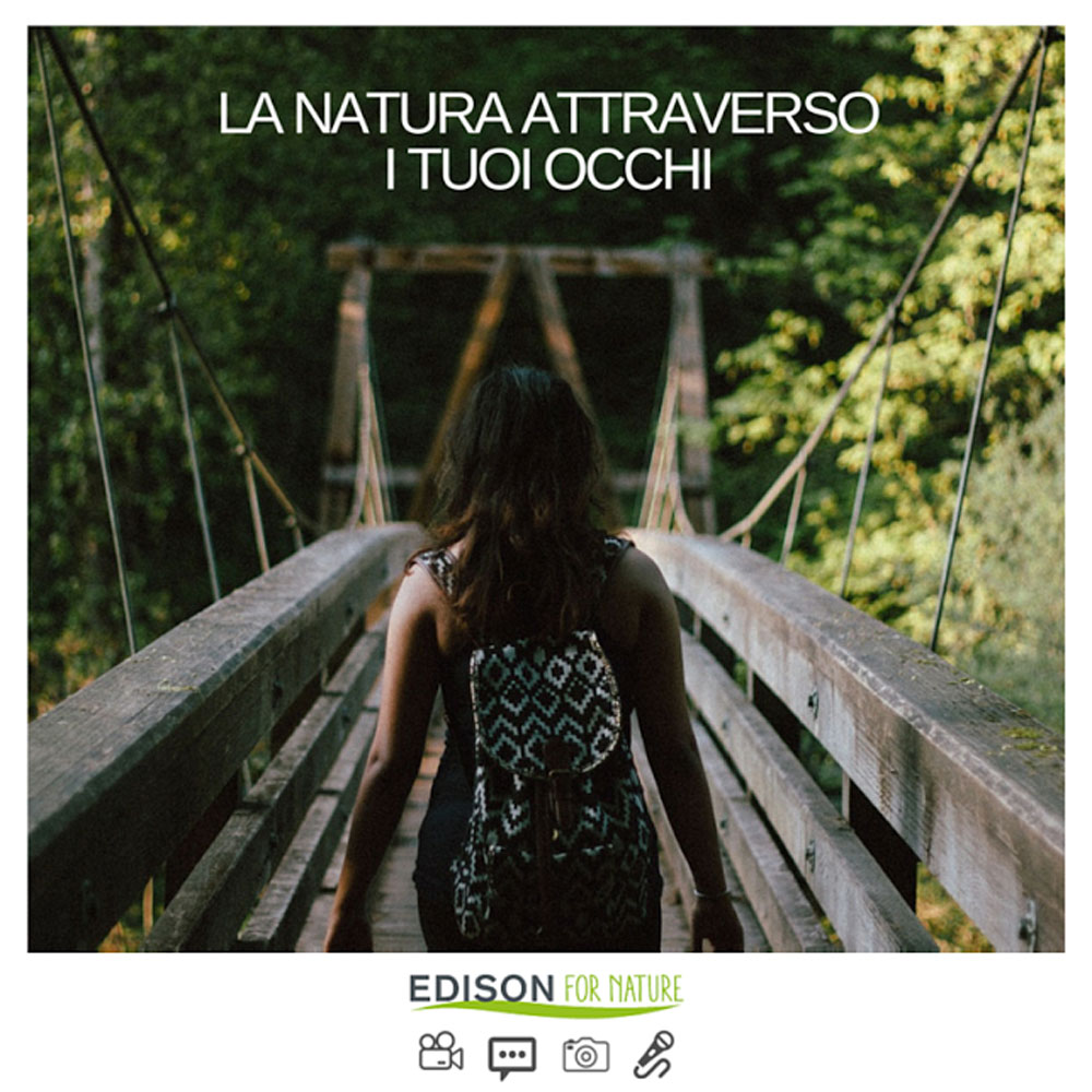 energia ecosostenibile-edison-for-nature