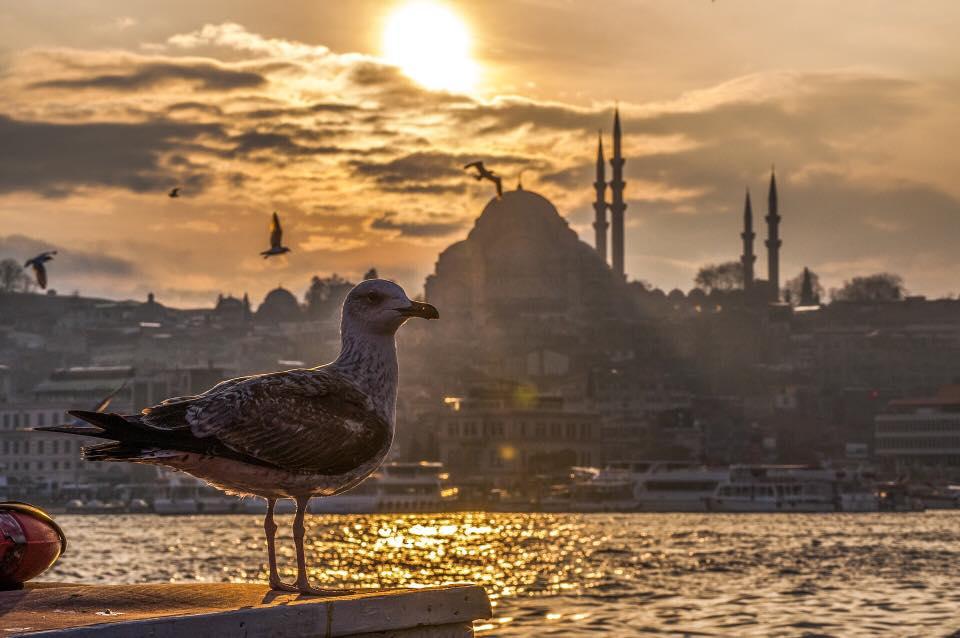 Turchia,  viaggi low cost indimenticabili