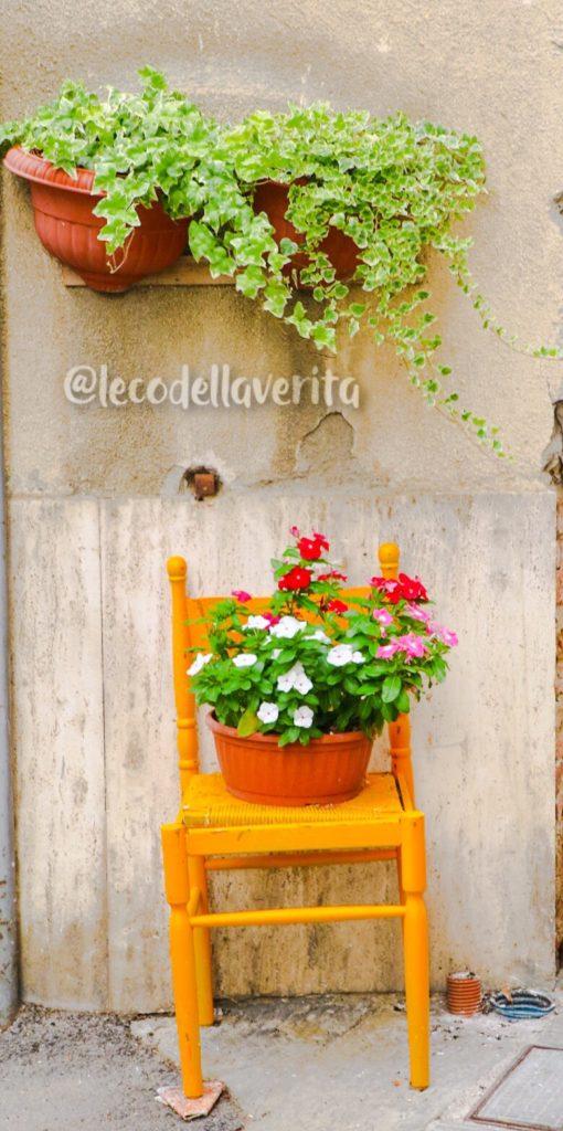 montepulciano fiori