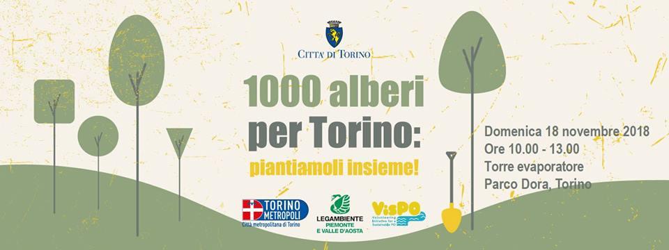 Natale in anticipo a Torino: 1000 alberi a Parco Dora