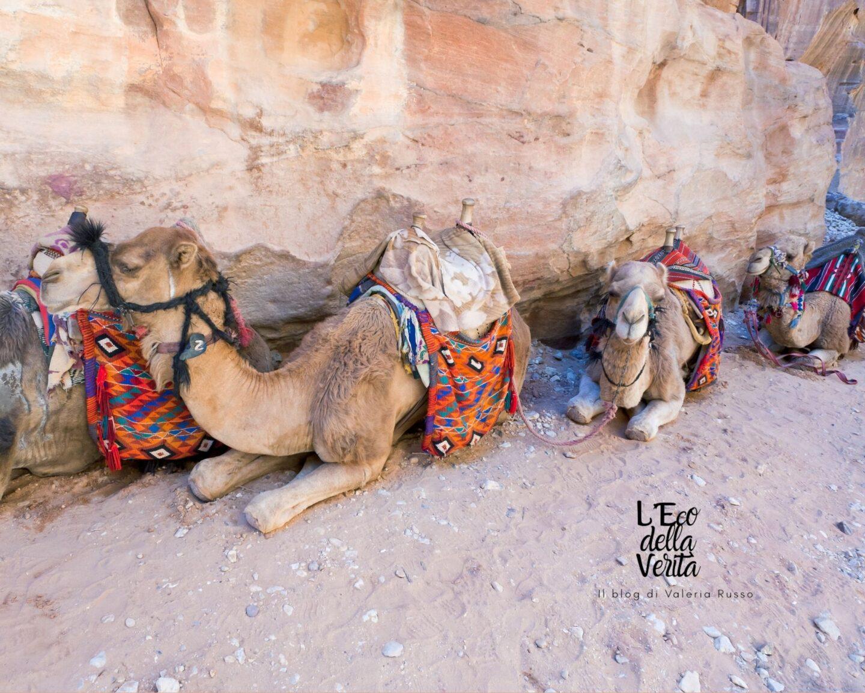 visitare Petra la perla dei Nabatei in Giordania