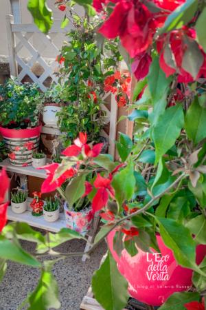 un balcone colorato di fiori